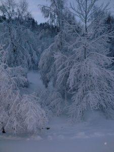 Neige-Gîte-Vosges